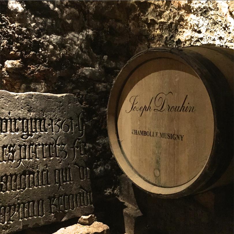 Lost in Wine - Joseph Drouhin 7