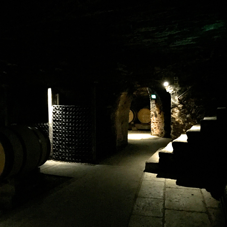 Lost in Wine - Joseph Drouhin 4