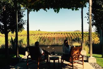 ph-vineyard-view